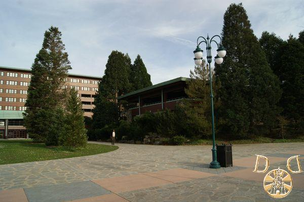 Disney Sequoia Lodge - Page 4 Dsc05554