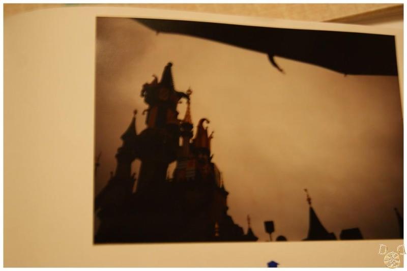 Le château en photos  Dsc08018