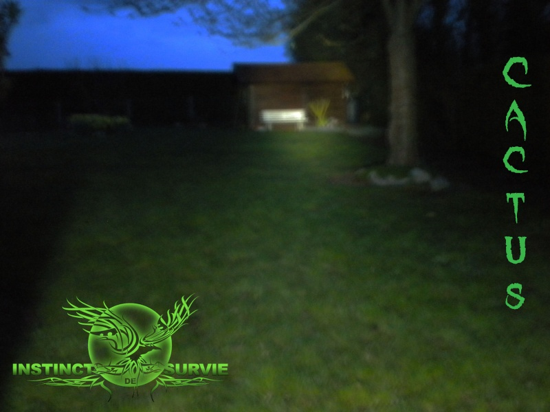 Up Grade lampe torche Maglite Dscn3815