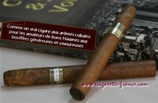 L'E-cigare jetable Elite sur Ecigarette-France.com 30265410