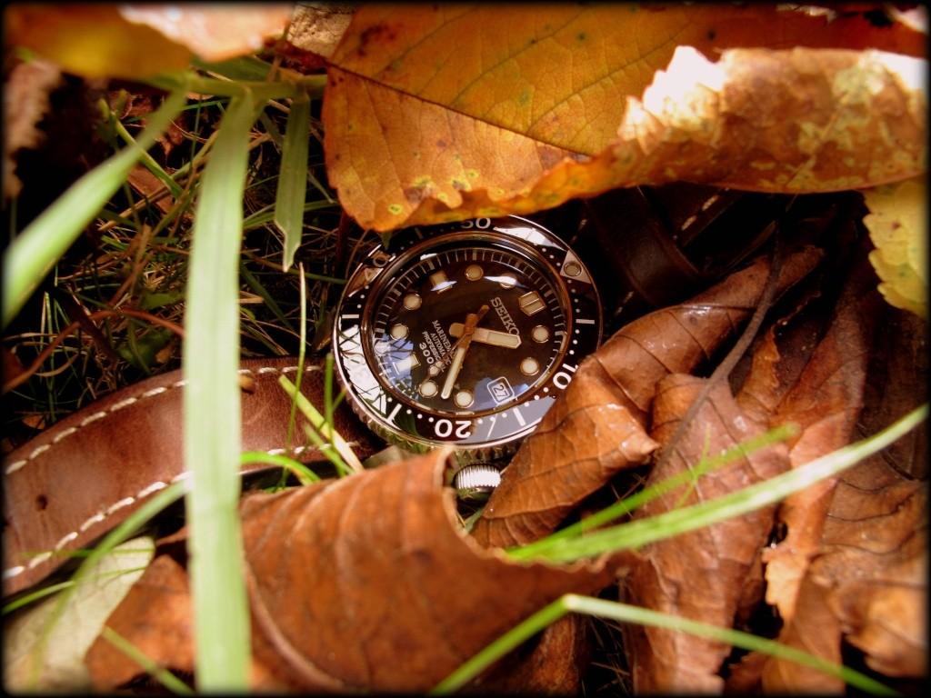 Ma Seiko MM 300, la montre de mes 50 ans... Mm_aut13