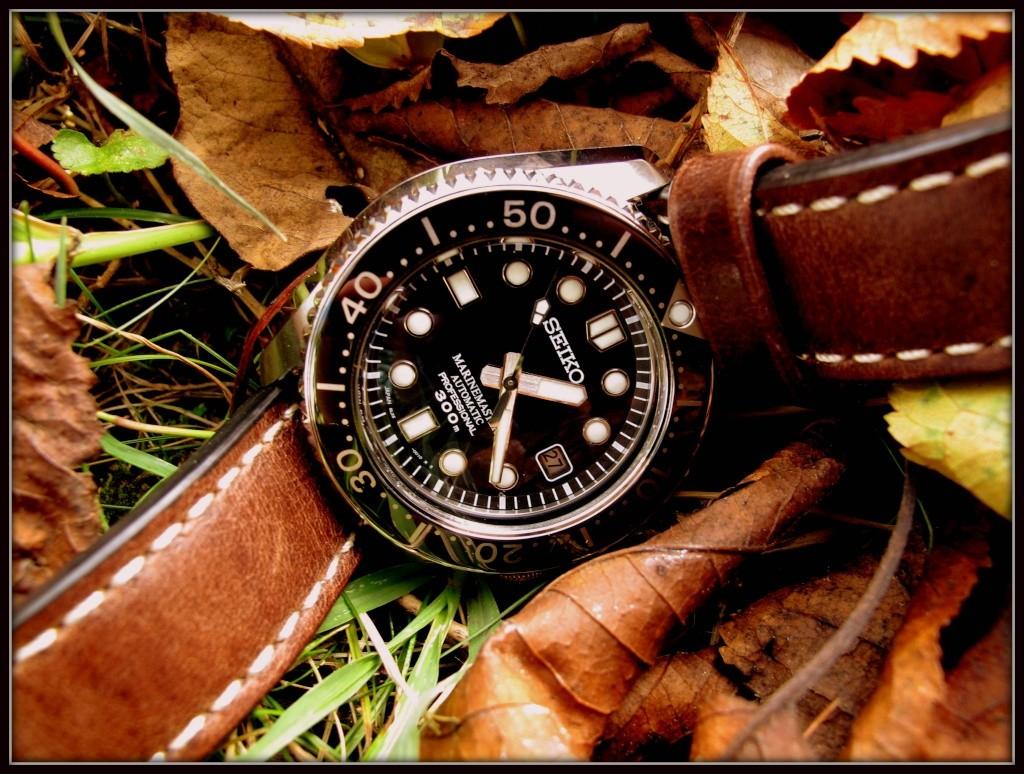 Ma Seiko MM 300, la montre de mes 50 ans... Mm_aut15