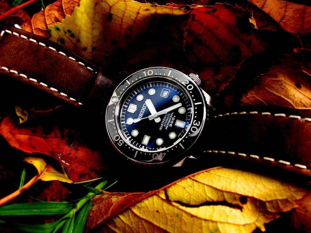 Ma Seiko MM 300, la montre de mes 50 ans... Mm_aut16
