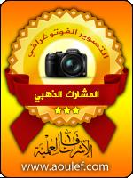وسام دورة التصوير الفوتوغرافي للمبتدئين - المشارك الذهبي