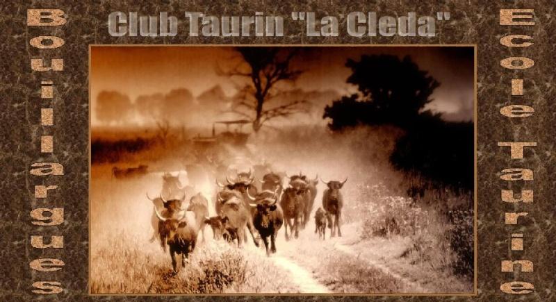 Club Taurin et Ecole Taurine de Bouillargues Image_10