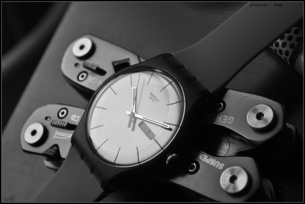 Nouvelle Swatch en 41mm. La New Gent. - Page 4 Dsc_1312