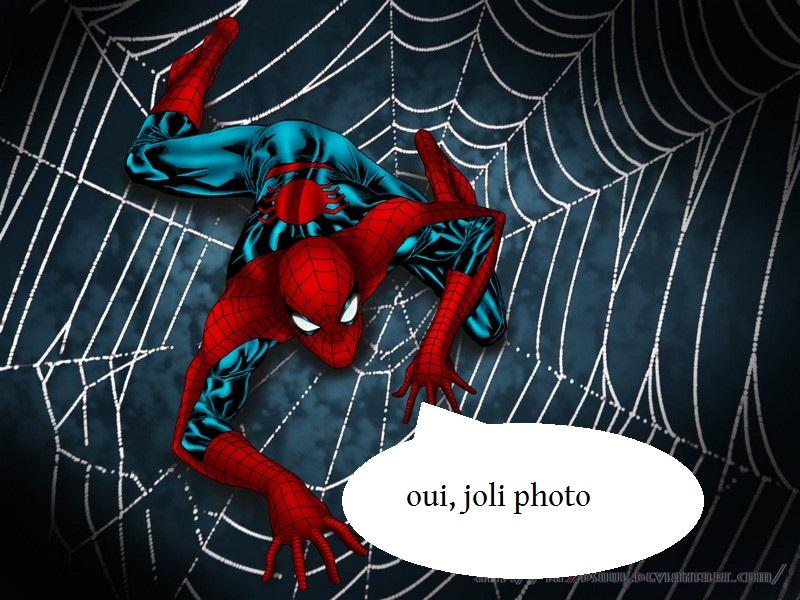 LA FOIRE AUX PHOTOS sur le vtt bien sur [2éme partie] - Page 2 Spider10