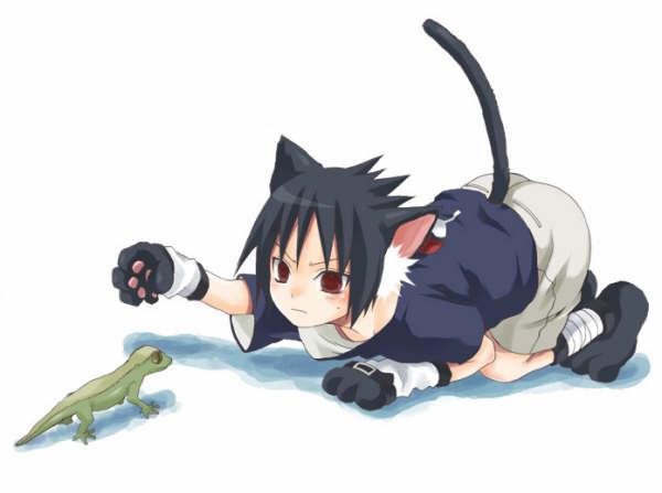 **GATOS DEL ANIME** Sasuke16