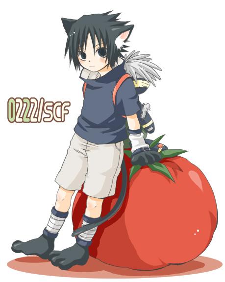 **GATOS DEL ANIME** Tomato10