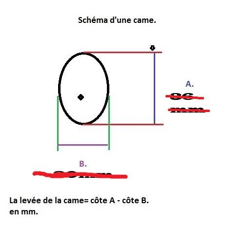 Différences AAC Schzom13
