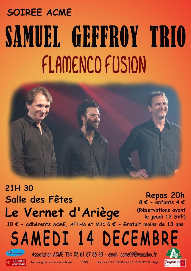 Concert ACME le 14/12 Flamenco Sam_de10