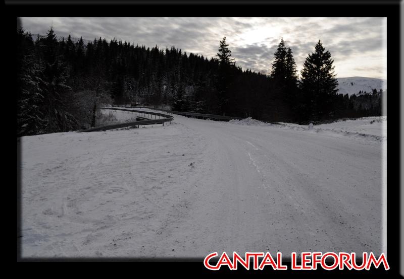 Le Plomb du Cantal Dsc_0011