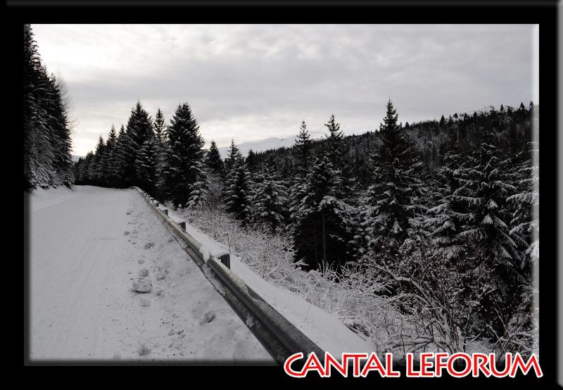 Le Plomb du Cantal Dsc_0012