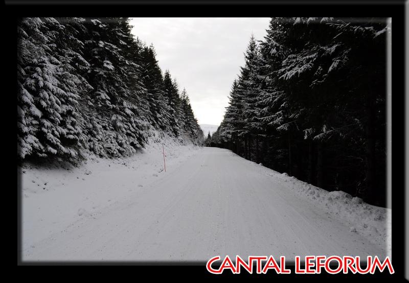 Le Plomb du Cantal Dsc_0013
