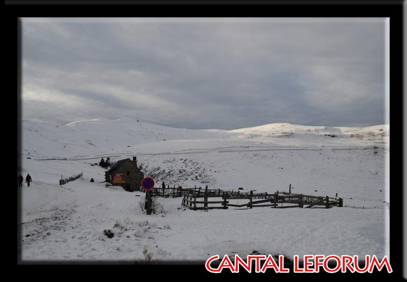 Le Plomb du Cantal Dsc_0015