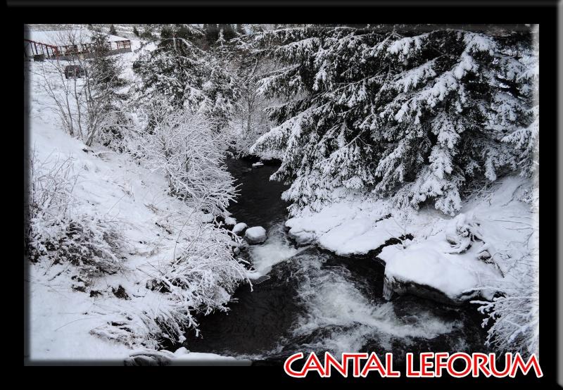 Le Plomb du Cantal Dsc_0017