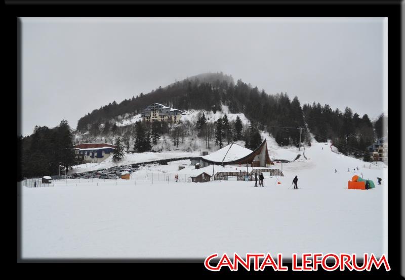 Le Plomb du Cantal Dsc_0322