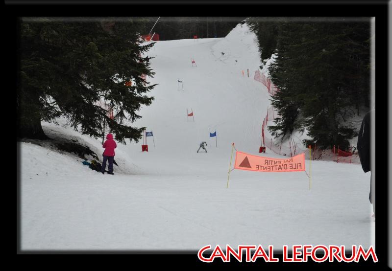 Le Plomb du Cantal Dsc_0323
