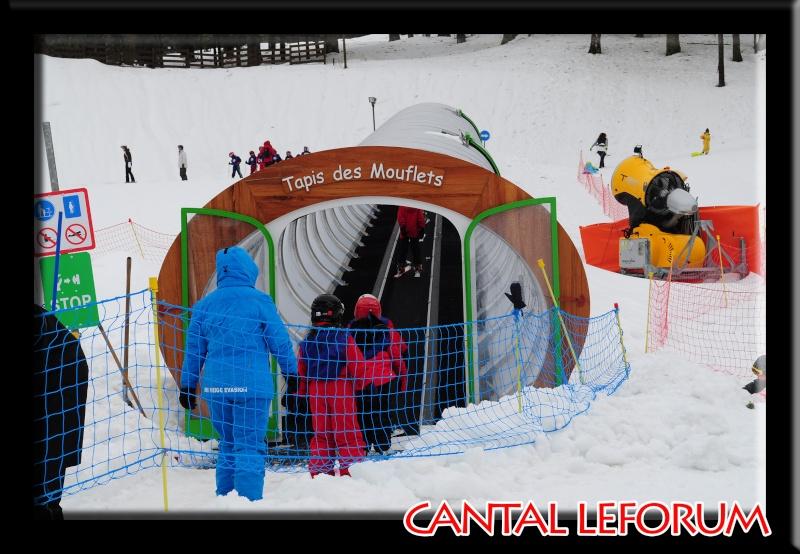 Le Plomb du Cantal Dsc_0324