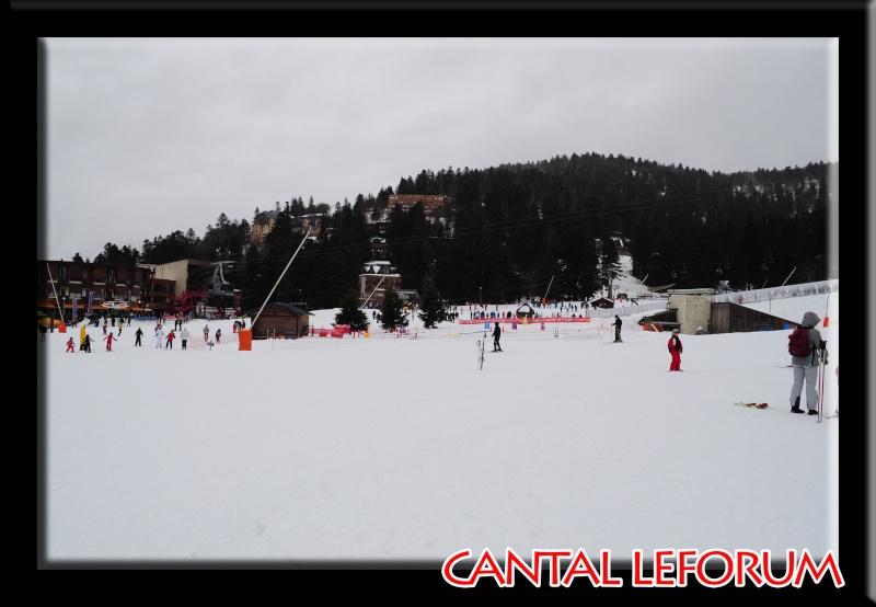 Le Plomb du Cantal Dsc_0325
