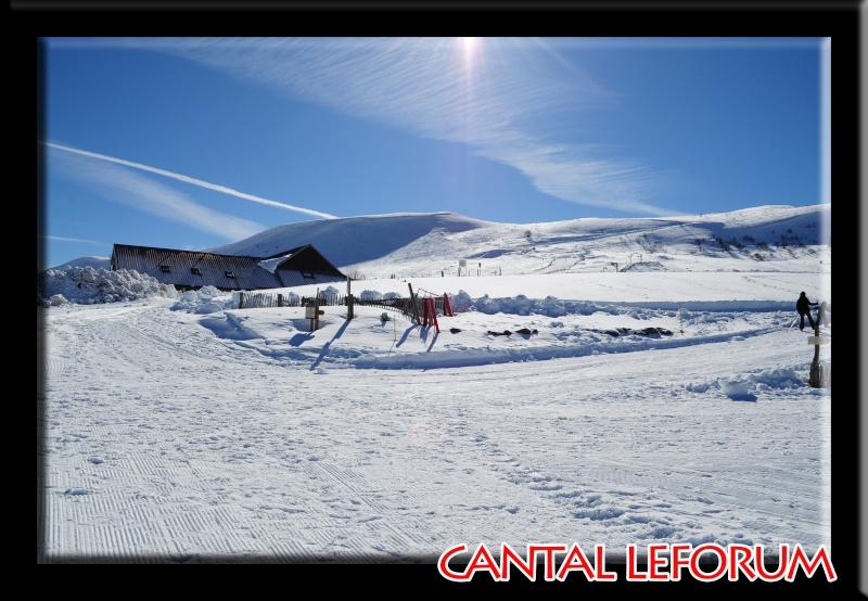 Le Plomb du Cantal Dsc_0513