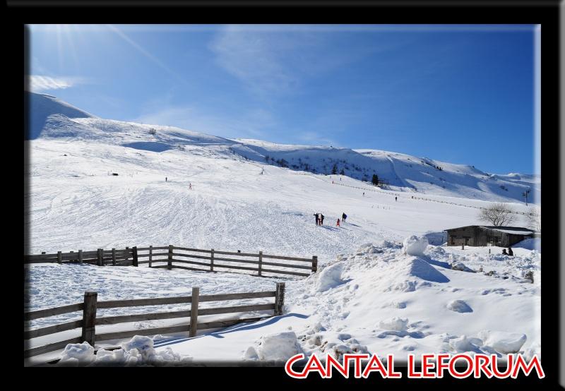 Le Plomb du Cantal Dsc_0517