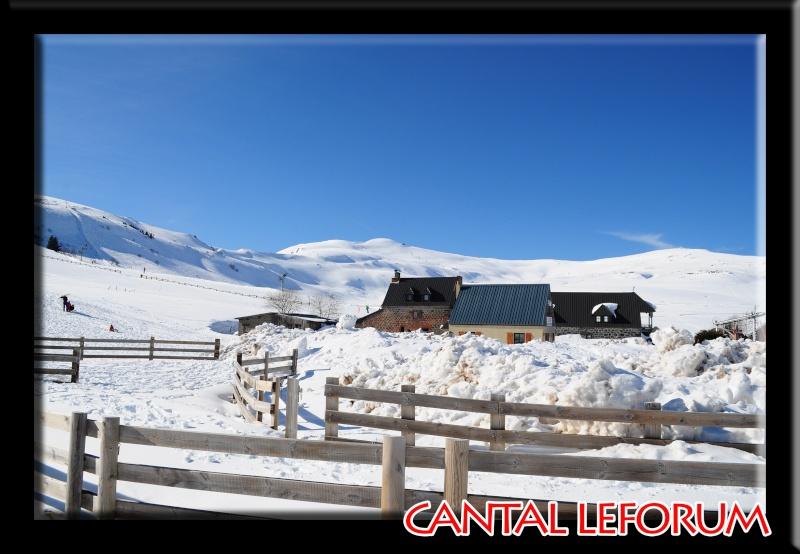 Le Plomb du Cantal Dsc_0519