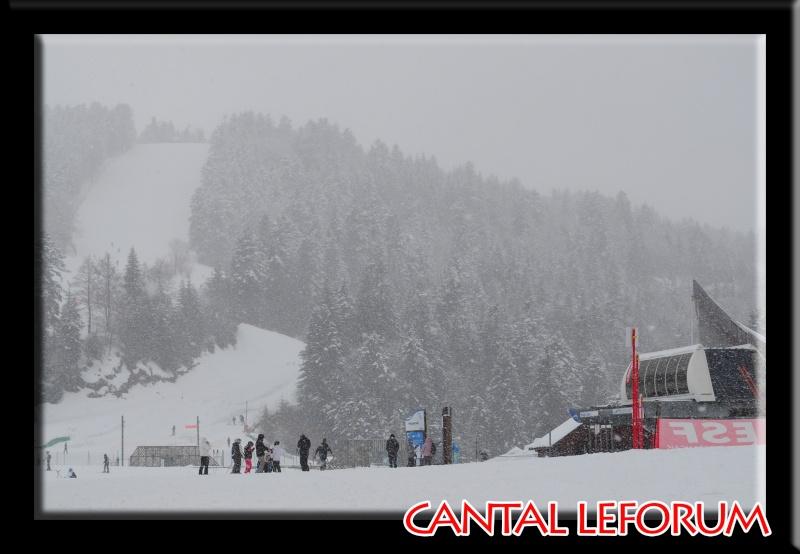Le Plomb du Cantal Dsc_0614