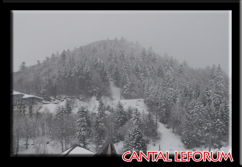Le Plomb du Cantal Dsc_0711