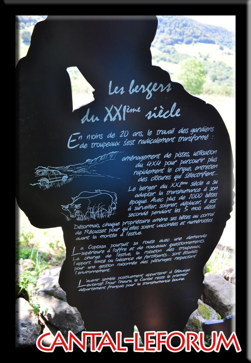 Le cirque de Récusset - vallée de la Maronne Dsc_8617