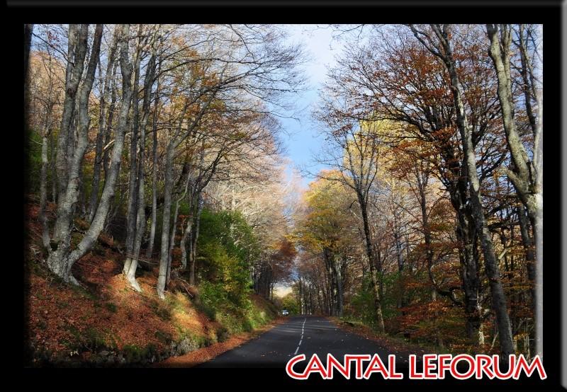 Autour du Puy Mary en automne Dsc_9416