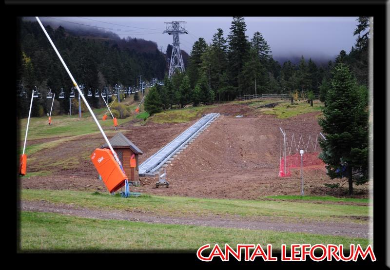 Le Plomb du Cantal Dsc_9417