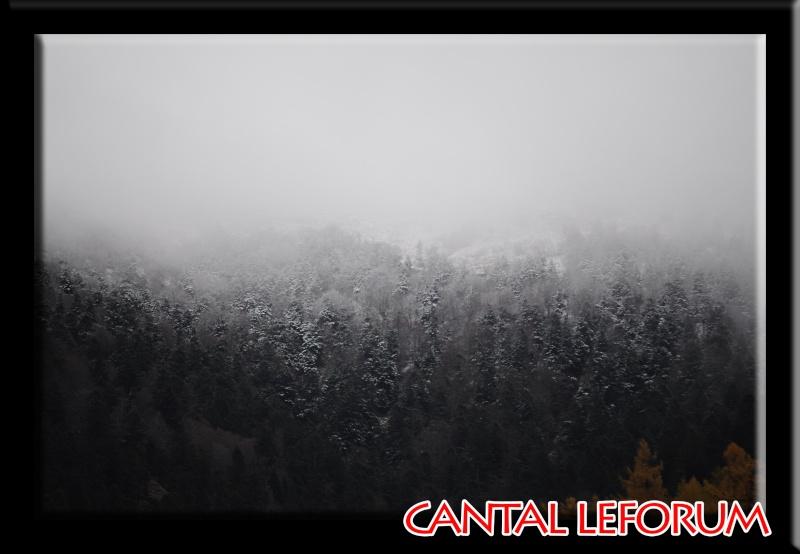 Le Plomb du Cantal Dsc_9510