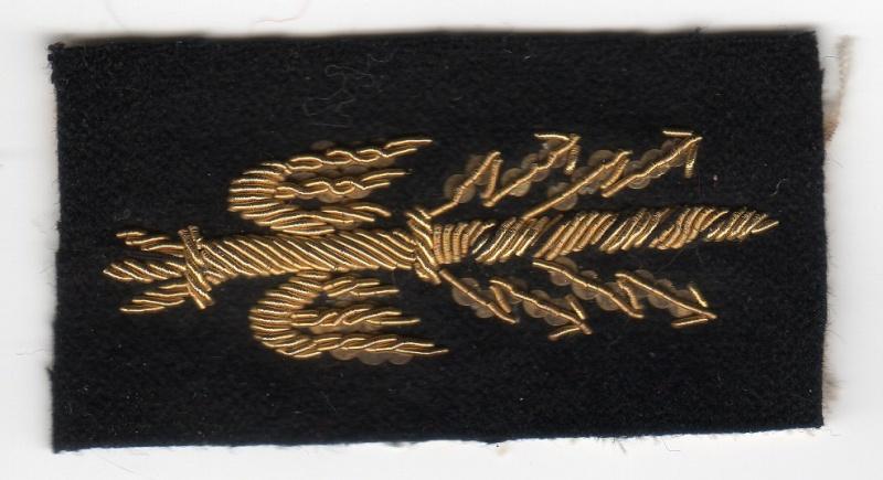 un uniforme de colonel Sans_t11