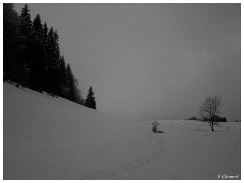 Noir et gris Pc290511