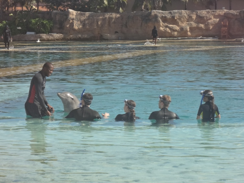 Notre Voyage à Paradise Island ( Bahamas ) Juille14