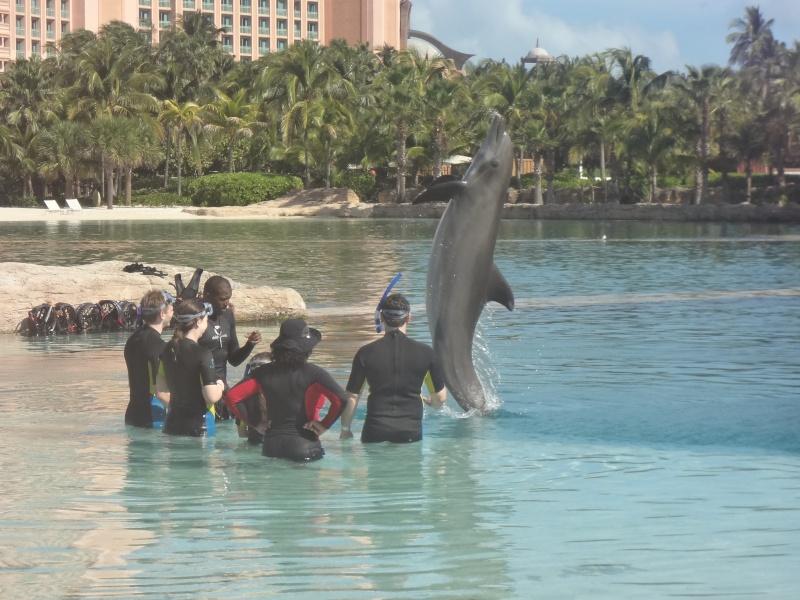 Notre Voyage à Paradise Island ( Bahamas ) Juille15
