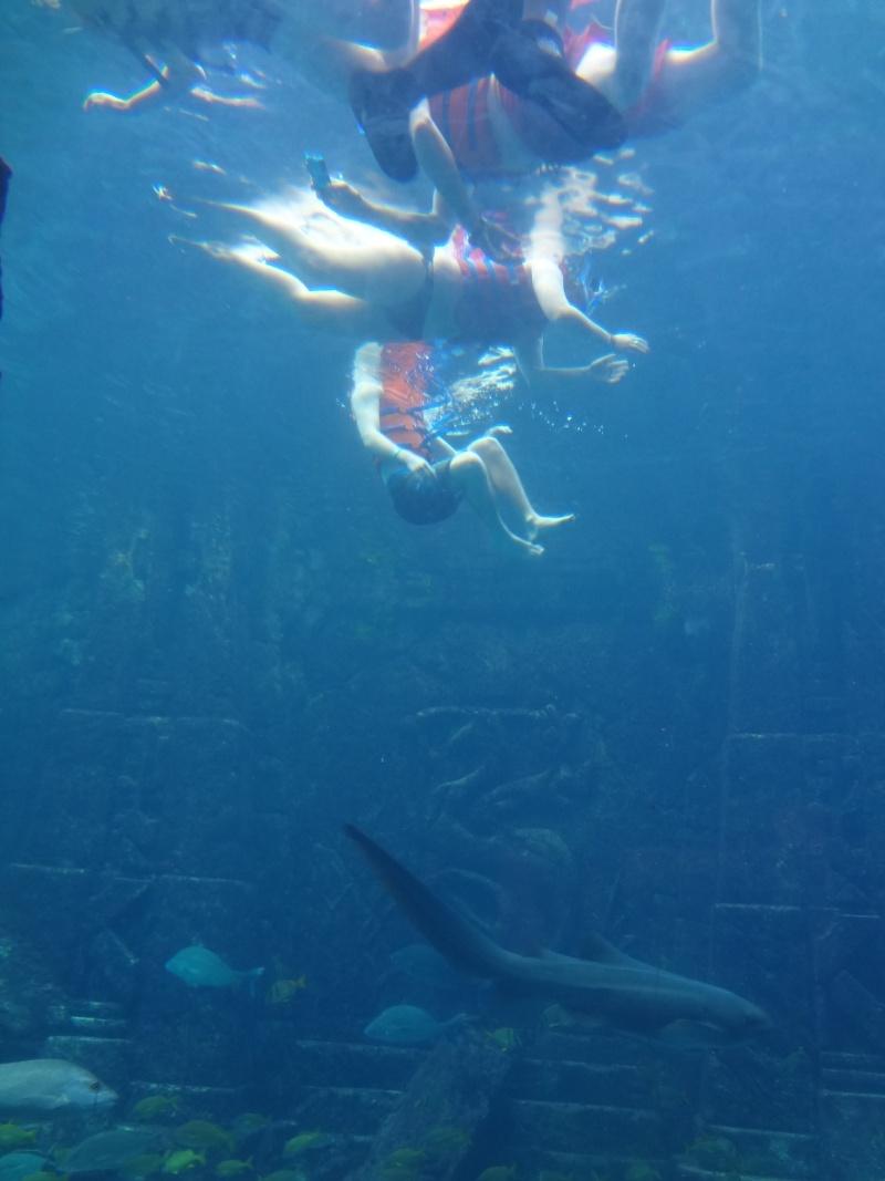 Notre Voyage à Paradise Island ( Bahamas ) Juille20