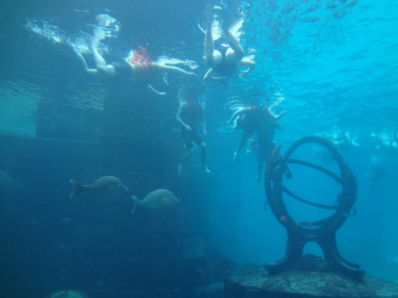 Notre Voyage à Paradise Island ( Bahamas ) Juille22