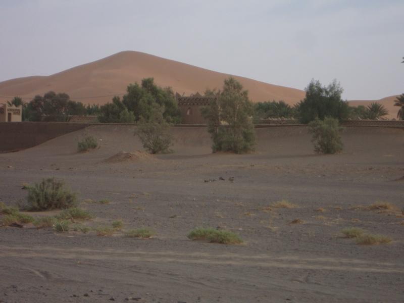 retour Maroc octobre 2013 - Page 2 Dsc04310