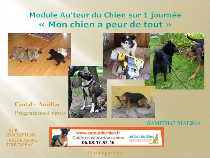 Modules canins : les dates  Peur_d10