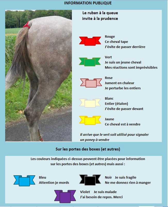 DINOS: le ruban jaune pour les chiens qui ont besoin d'espace  - Page 5 Rubans10