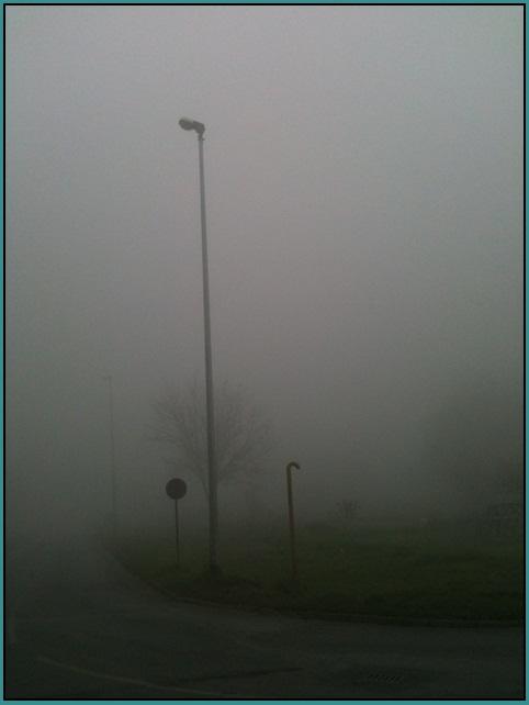 Motiv fotografiranja: magla 2013-131