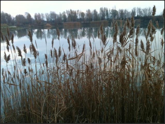Motiv fotografiranja: rijeka, jezera, slapovi, bara, vodenica, voda u pokretu - Page 2 2013-175