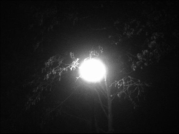 Motiv fotografiranja: Crno-bijela fotografija 2013-202