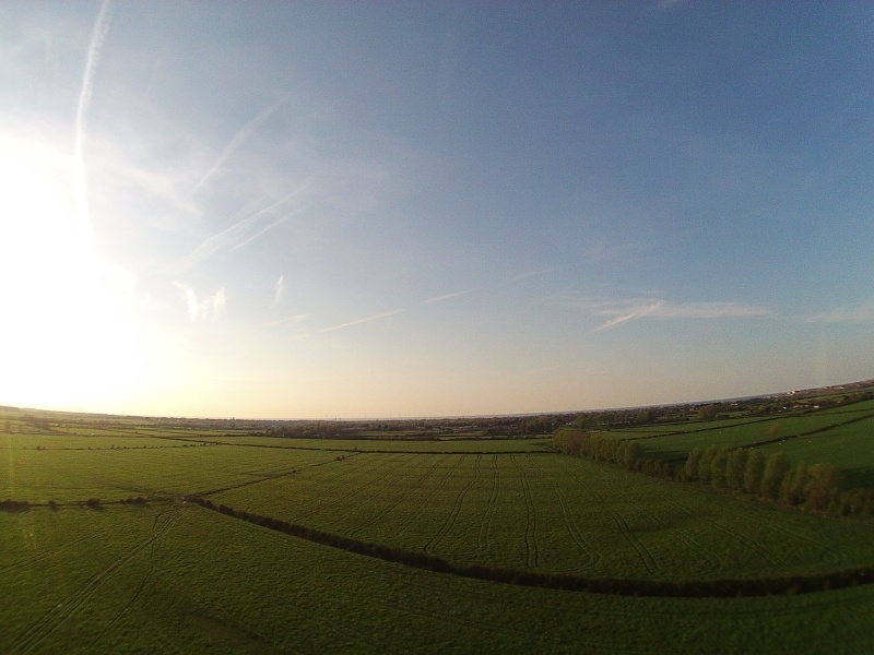 random Flying field pics - Page 2 Img06610