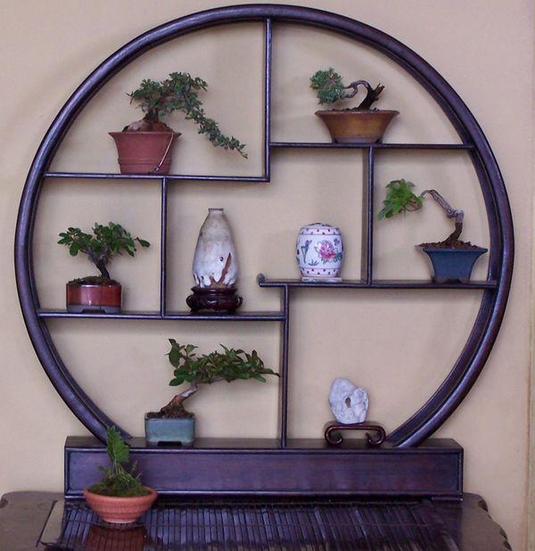 Formal Bonsai display accents Displ010