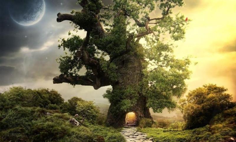 The Fairy Tale Bonsai Style Bild_012