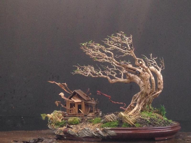 The Fairy Tale Bonsai Style Bild_322