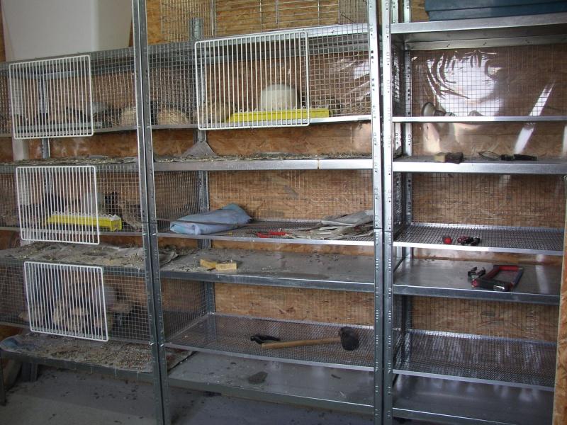 fabrication cages a poussins Aleveu14